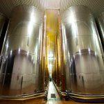 Bodega de almazara de aceite de oliva - Certificados de calidad AENOR ISO 14001 y 9001, IFS Food, BRC, Denominación de Origen Monterrubio