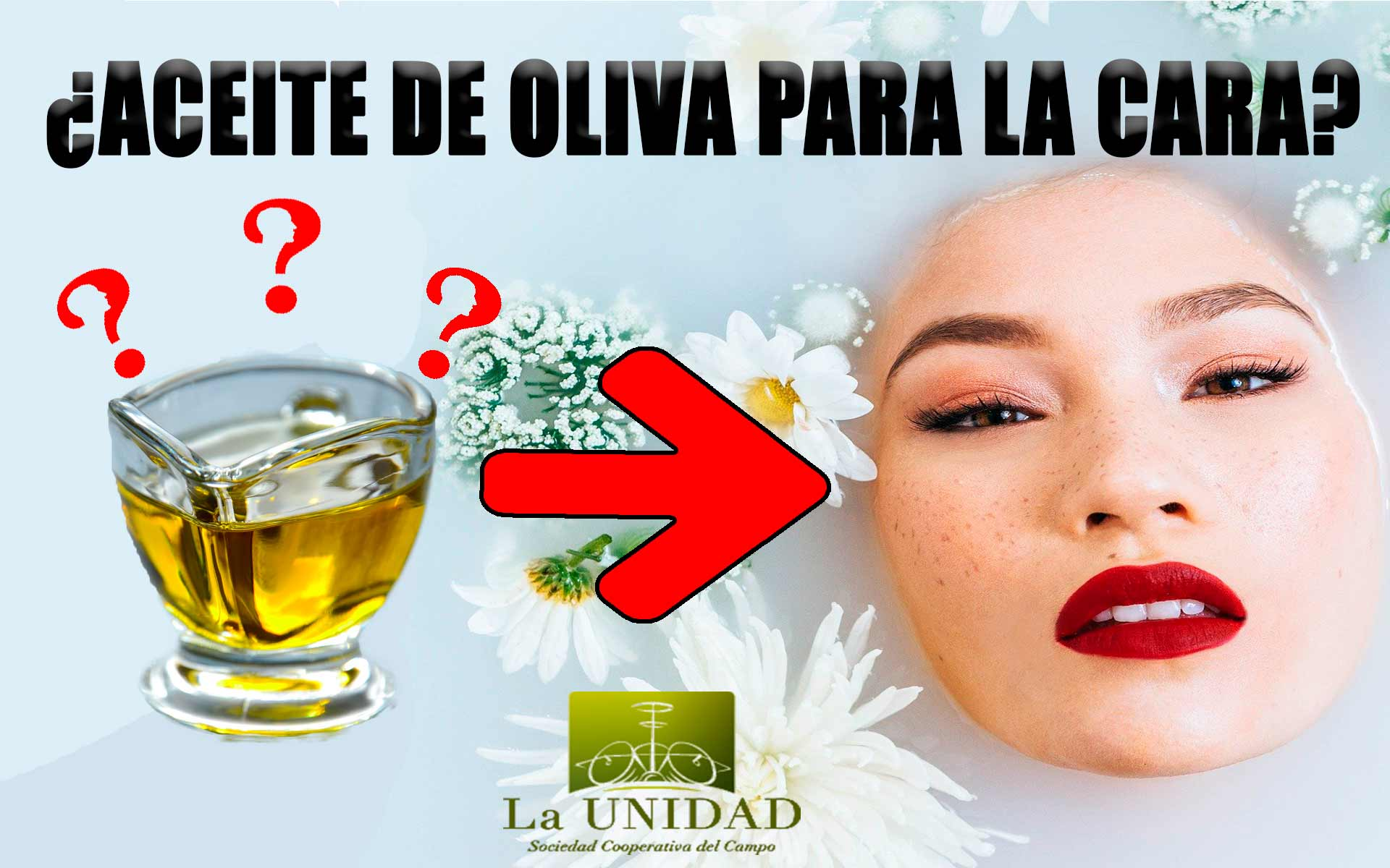 Aceite De Oliva Para La Cara Infórmate Y Rejuvenecerás