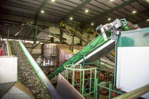 Elaboracón de aceite de oliva