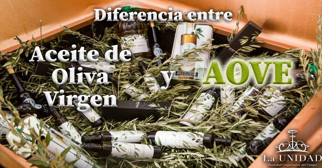 Diferencias-entre-aceite-de-oliva-virgen-y-aceite-de-oliva-virgen-extra