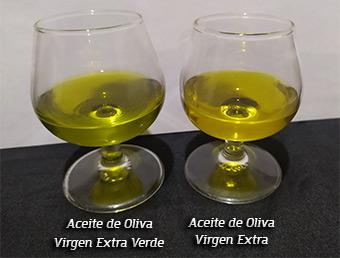 aceite verde frente al aceite de oliva virgen extra